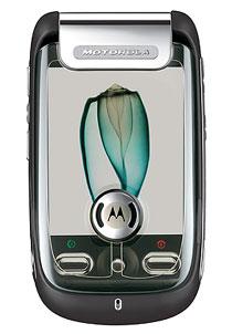 020001065610 Collaborazione tra Motorola e Microsoft