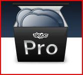 skype-pro.JPG