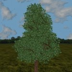apple-iphorest-un-albero-piantato-per-ogni-download