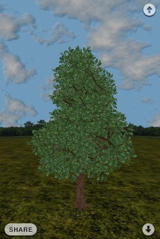 apple-iphorest-un-albero-piantato-per-ogni-download Apple iPhorest: Un albero piantato per ogni download