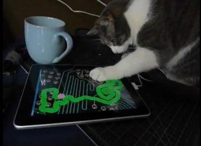 Apple iPad a giudicare dal video, uno passatempo per tutti